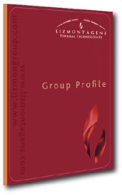 Lizmontagens Group Profile (2016)